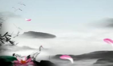 中国风-白鹤