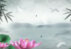 中国风-美丽的白鹤
