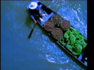 河流船运荔枝水果
