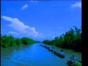 河流运输的船队