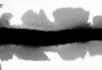 水墨视频素材5
