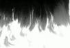 水墨视频素材2