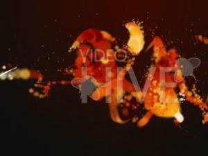 火焰粒子舞动效果LOGO展示