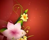 深红色背景花纹生长