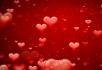 漂浮的红心