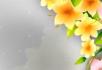 花纹速度生长