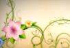 绿色花藤花纹生长