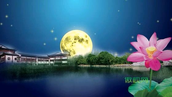 荷塘月亮星空