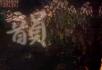 动态视频背景 中国风格的素材 二胡 古琴