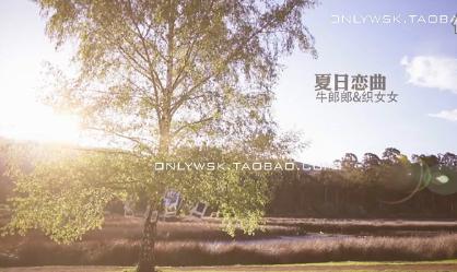 夏日恋情浪漫MV
