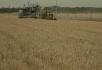 农业大丰收