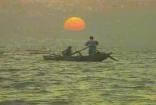 湖上鸭子小舟