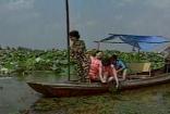 荷塘捕鱼采莲