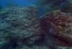 海底礁石1
