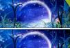 弯月湖星空湖面月亮有音
