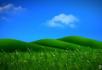 蓝天绿地草地