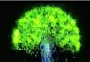 梦幻光影生长树大树生长