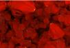 L1207玫瑰花瓣
