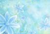 清爽小清新优美的花