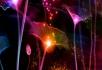 超唯美金光动态荷叶光效粒子