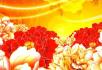 大气牡丹花国花中国风动漫花开