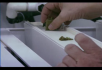 实验室植物种植试验