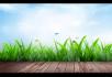 蓝天绿草花园平台