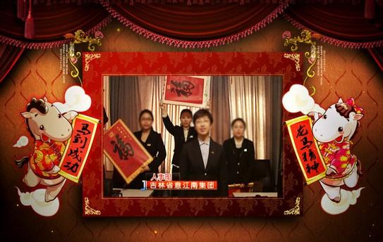 AE马年拜年视频模板