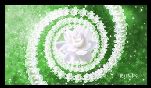 花朵漩波点