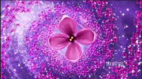 丁香花紫花漩涡粒子波点