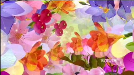 唯美花卉彩色花朵星光