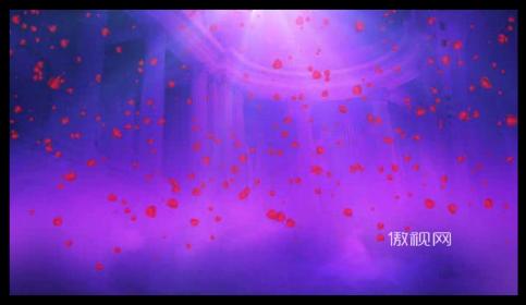 飘落 玫瑰 花瓣 欧式 新婚 礼仪 结婚 典礼