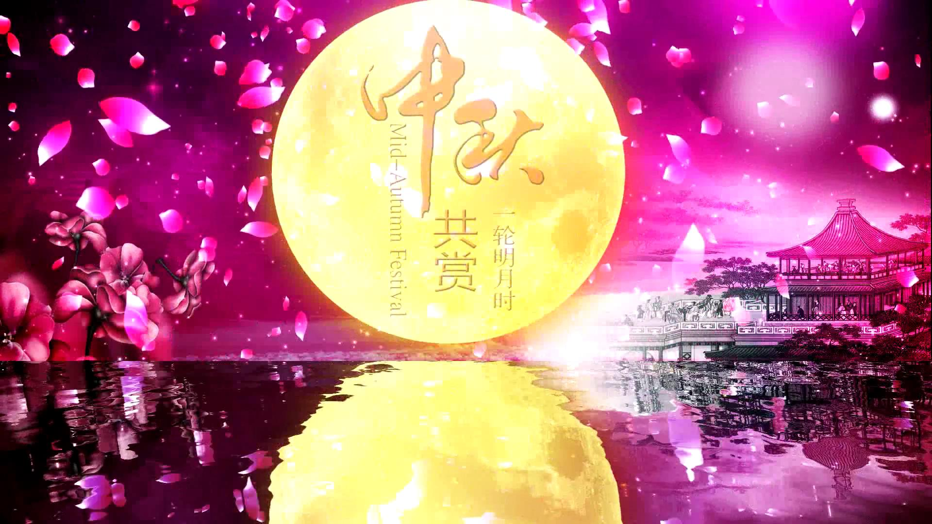 中秋节视频视频素材_中秋节视频模板下载_中秋节视频